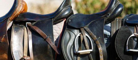 équipement du cheval